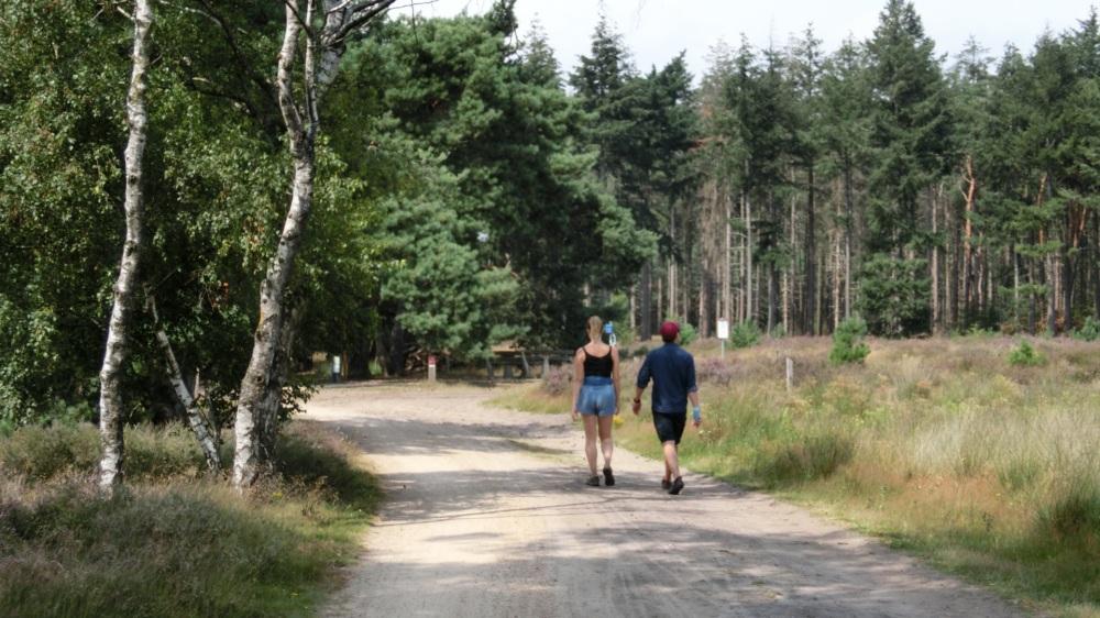 Wandelaars Strabrechtse Heide