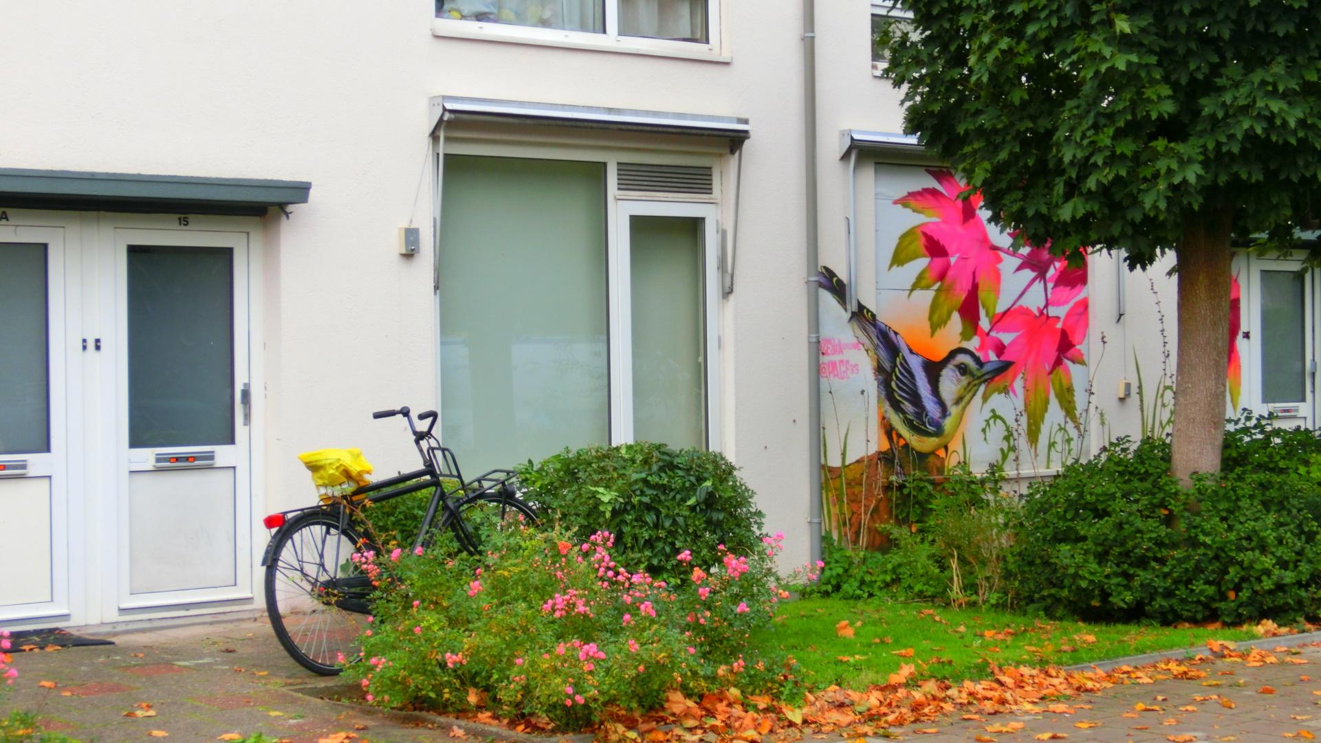 Duplex woningen Bomenbuurt
